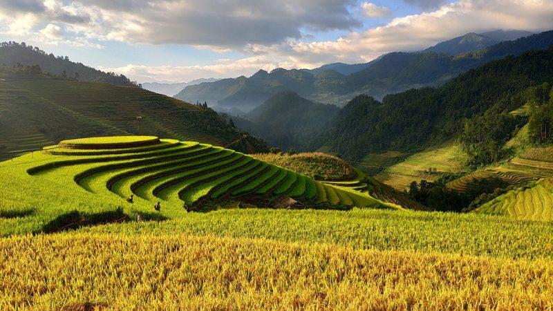 Conseils pour un séjour écoresponsable au Vietnam