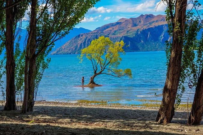Deux sites incontournables de la Nouvelle-Zélande : Lake Wanaka et Nelson Lakes